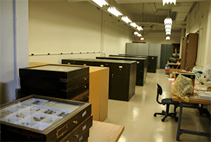 Main collection space of the WIRC in the Stock Pavilion.