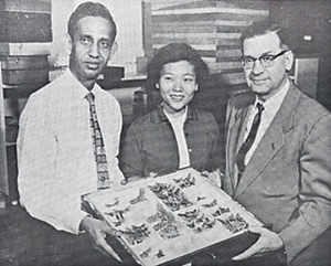 Three individuals holding an open insect drawer that contains moth specimens.